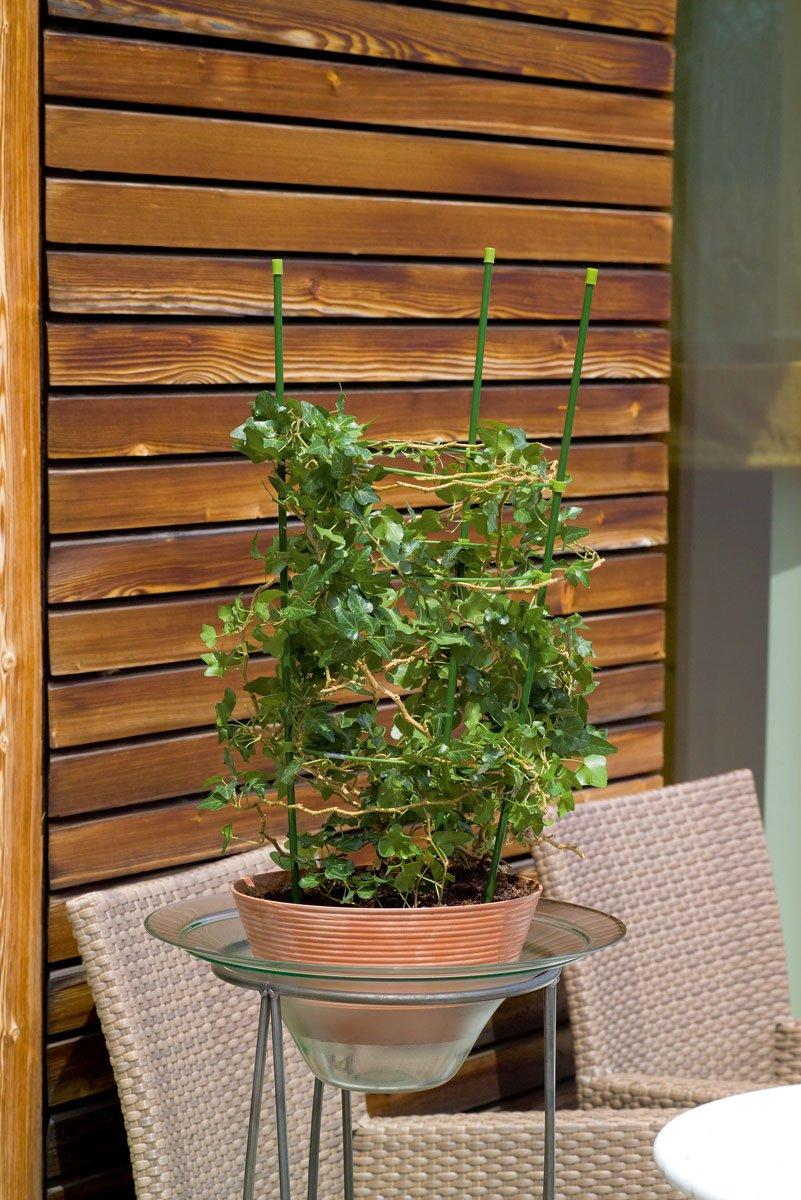 Spalier pentru plante la ghiveci 60 cm