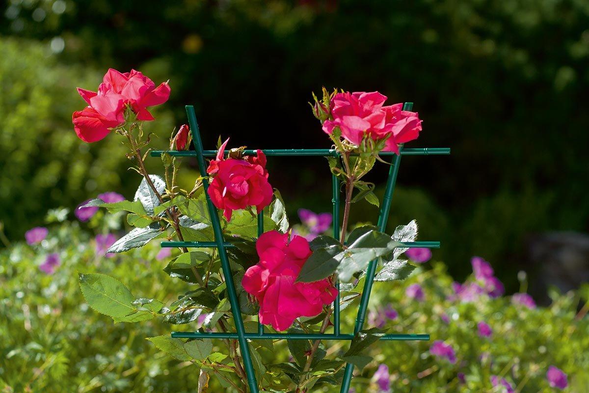 Spalier din plastic pentru plante la ghiveci, 24,5 x h 38,5 cm