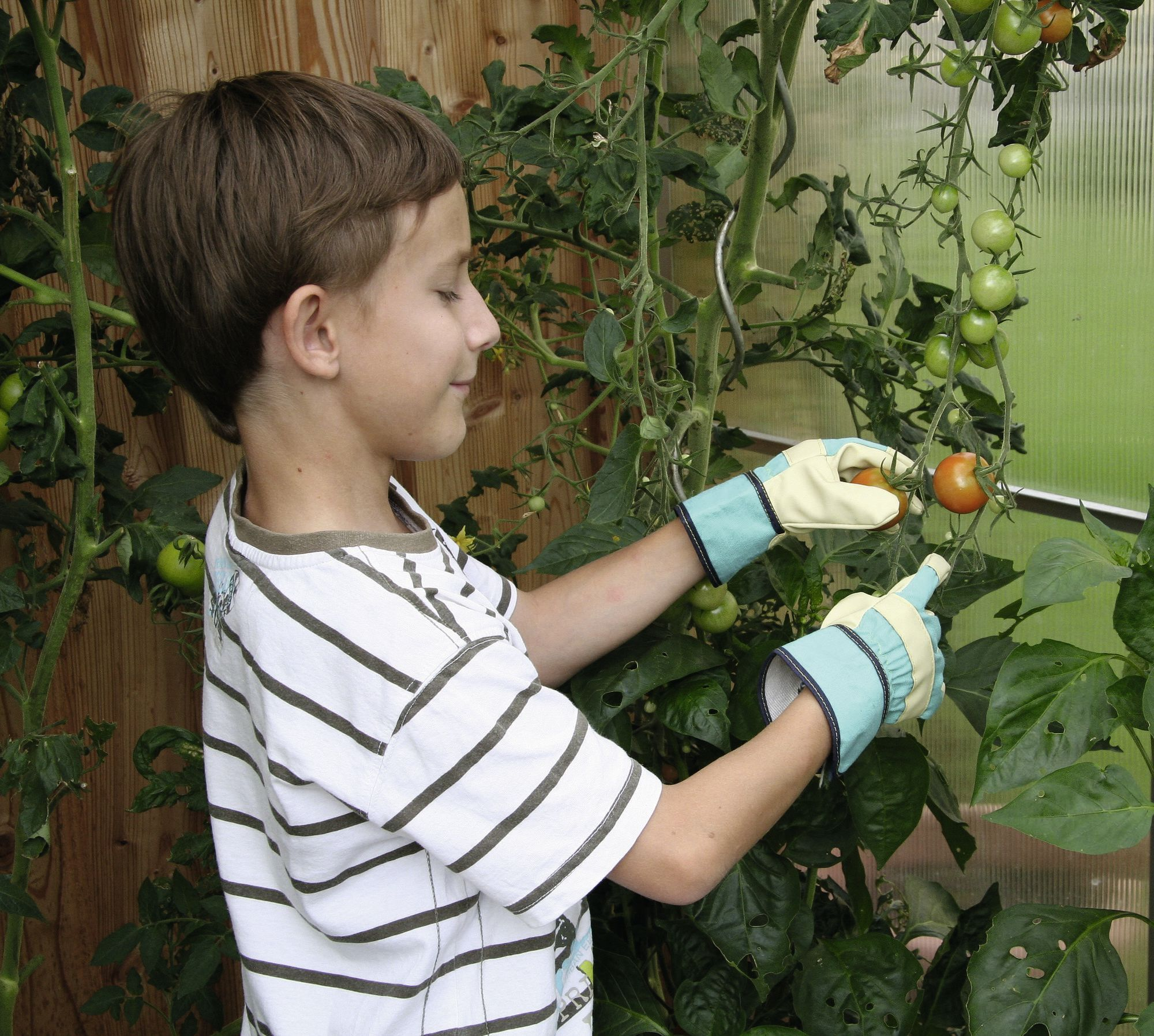 Manusi pentru copii Keron Garden Junior 6-8 - verde